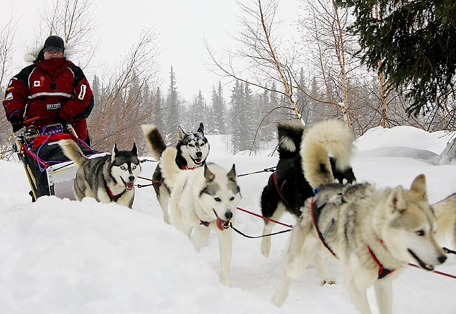 Canadian musher Karen Ramstead leads her team out of the Finger Lake, Alaska, checkpoint of the trail.