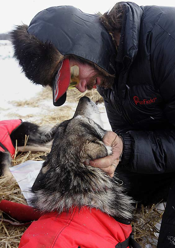 A great race and a second-consecutive Iditarod title for Lance Mackey and his lead dog Larry deserve a hug. And maybe a kiss.