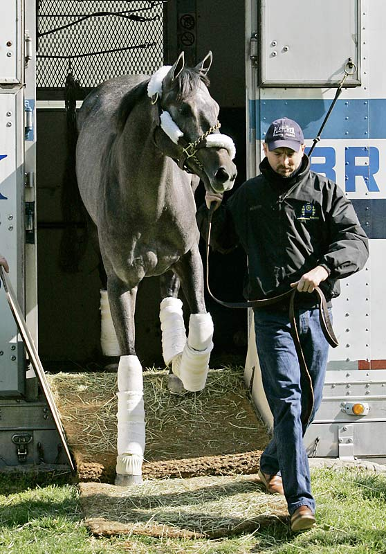 Post Position: 14<br>Trainer: Todd Pletcher<br>Jockey: Ramon Dominguez<br>A year ago four-time Eclipse Award-winning trainer Todd Pletcher saddled five horses and still remained winless in 19 tries, a record. This year he is under the radar with Blue Grass winner Monba and longshot speedball Cowboy Cal. Monba, who only reached the Derby by winning the Blue Grass, appears to be healthy for the first time since early in the winter and will be a live play for many bettors.