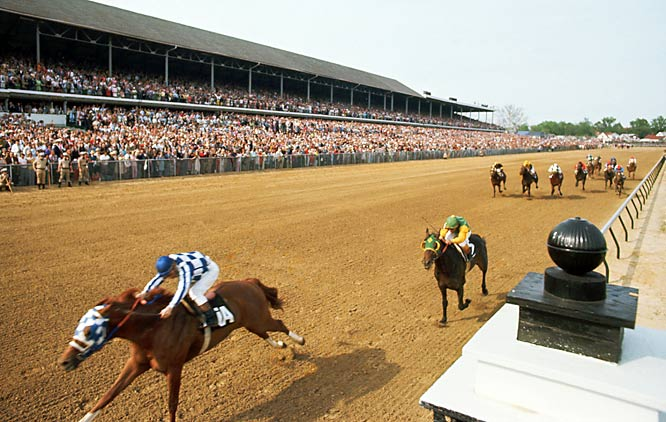 The first athlete to appear on the cover of Time, Newsweek, and Sports Illustrated in the same week, Secretariat ran the fastest Kentucky Derby ever and won the Belmont Stakes by a record 31 lengths to break a 25-year drought of Triple Crown winners, the longest before the current 30-year streak.