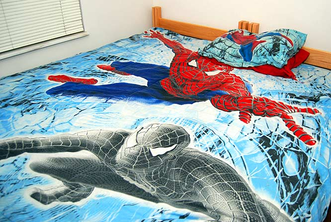 """Spider Man's my favorite,"" Warren said. And the craze doesn't stop at bed sheets. He has a Spidey mouse pad, numerous posters, a book bag and even a Spidey web tattooed on his arm."