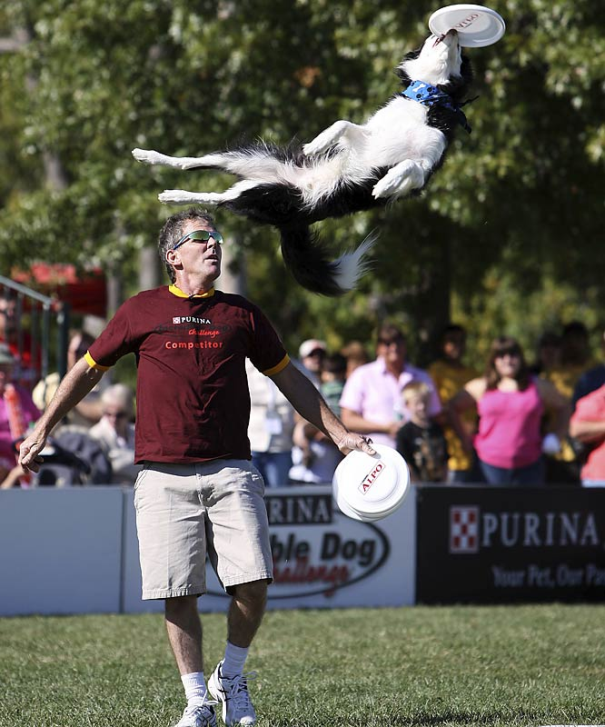 Danny Venegas of Wellington, Fla., and his dog Jumpin' Jack in the Freestyle Flying Disc event.