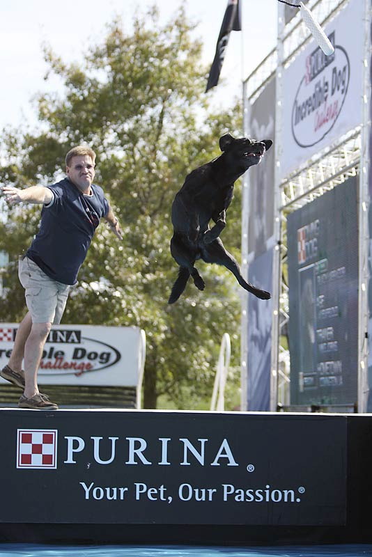 Mike Jorns of Covington, La., and his dog Reagan during the diving event.