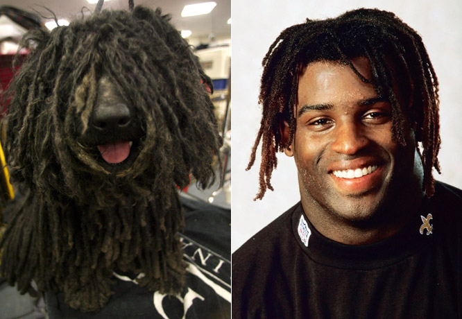 Ricky Williams and this Puli would certainly turn some heads.