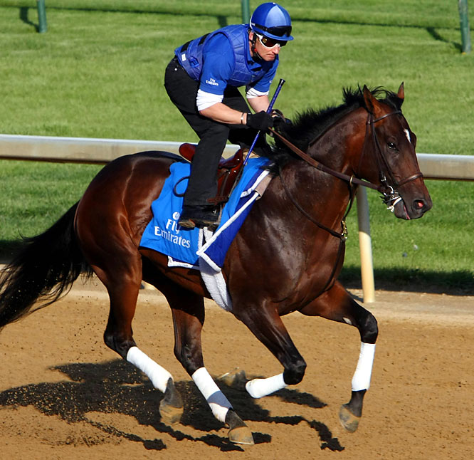 Post Position: 19<br>Jockey: Ramon Dominguez<br>Trainer: Saeed bin Suroor<br><br>Desert Party seems the more serious half of the Godolphin entry (the other is UAE Derby winner Regal Ransom). Royally bred, the son of Street Cry won the Sanford Stakes at Saratoga last summer. But his runnerup finish in the UAE Derby was a disappointment -- his connections switched jockeys after that race, dumping the great Italian rider Frankie Dettori in favor of Ramon Dominguez.