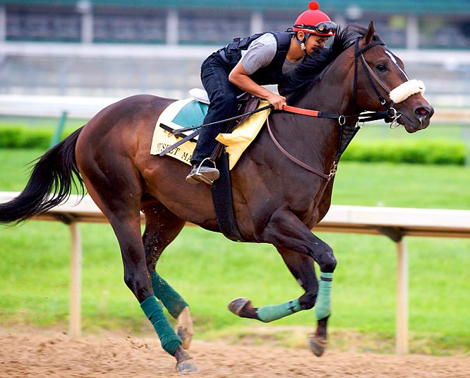 Post Position: 2<br>Jockey: Eibar Coa<br>Trainer: Derek Ryan<br><br>He's coming into the Derby off consecutive victories in the Tampa Bay Derby on March 14 and in the Illinois Derby on April 4. He's now won five of seven career starts but has yet to show the kind of speed to match some of the better horses in the field. Coupled with his record, his long odds should ensure he sees plenty of action at the betting windows on Saturday.