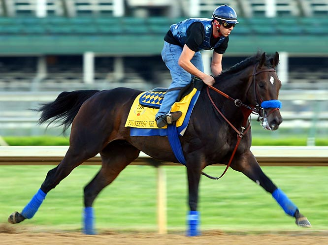Post Position: 16<br>Jockey: Garrett Gomez<br>Trainer: Bob Baffert<br><br>A son of 2003 Derby favorite (and Belmont winner) Empire Maker, Pioneerof the Nile has shown little difficulty with nine furlongs, so he's likely to do well with 10 in the Derby on Saturday. He's won four in a row since finishing fifth in last year's Breeders' Cup Juvenile, a run that includes victories in the San Felipe Stakes and the Santa Anita Derby. But all of his wins have come either on turf or on synthetic tracks, so there is a lot of uncertainty about how he will handle the dirt at Churchill Downs. If anybody should know, it's trainer Bob Baffert, who's won the Derby three times since 1997.