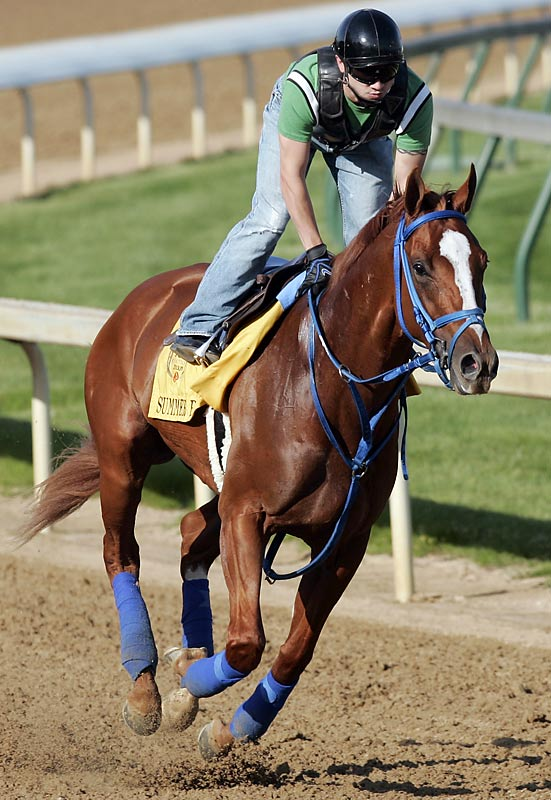Post Position: 17<br>Jockey: Chris Rosier<br>Trainer: Tim Ice<br><br>He's a longshot for a reason, and not just because he has yet to show great speed. Summer Bird has just one win -- in a six-furlong Maiden at Saratoga last August -- in 10 career starts, and in his last two has finished behind fellow Derby entrants Papa Clem and Hold Me Back.
