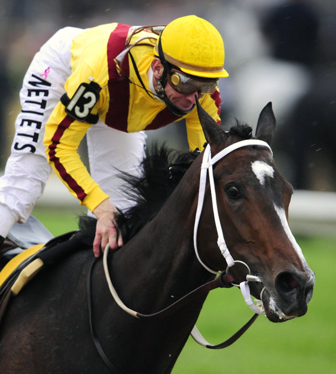 Rachel Alexandra was an overwhelming Preakness favorite, based on her dominating victory at the Kentucky Oaks.