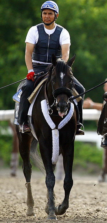 Jockey: Jose Lezcano<br>Trainer: Nick Zito<br><br>It took Miner's Escape six tries to break his maiden, which he did at Gulfstream Park on March 14. Seven weeks later, on Derby day, he won the Federico Tesio Stakes at Pimlico, where he pressed a slow pace and won going away. Having not shown the speed of some of his Belmont rivals, he'll probably post some of the longer odds on the board this Saturday. That doesn't mean that the son of the great Mineshaft won't be running at the end.