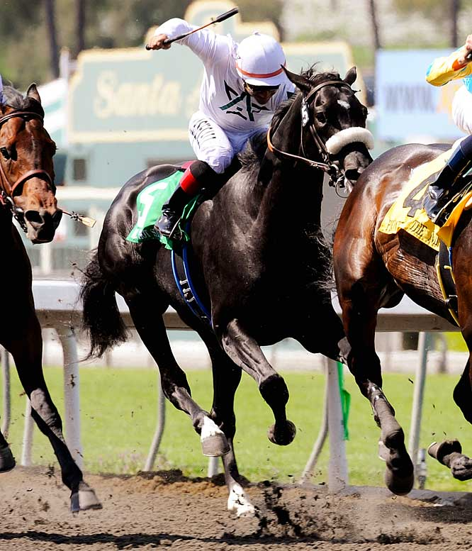 Jockey: Edgar Prado<br>Trainer: Eoin Harty<br><br>Two things may have contributed to his 15th-place showing in Kentucky: the mud and the surface of the track. If it's the former, a dry day could help him immensely. If it's the latter -- the Derby was his only lifetime race on dirt -- then Belmont Park will offer no relief. He's a talented colt with a pedigree that would seem to indicate a willingness to stay for 1 1/2 miles. But he's also a stone closer in a race that's already full of them..