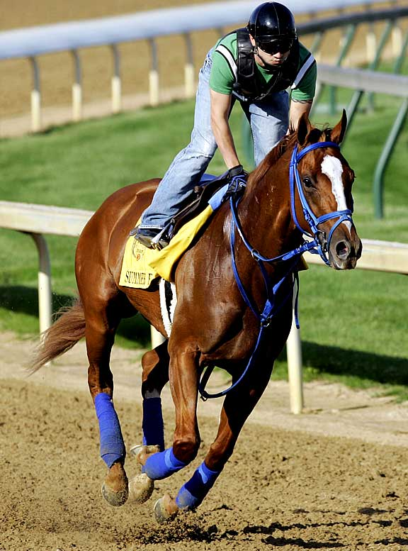 Jockey: Kent Desormeaux<br>Trainer: Tim Ice<br><br>A son of Birdstone, who spoiled the Triple-Crown bid of Smarty Jones in 2004, Summer Bird is another late-running specialist who needs a hot pace to run into. But even if he gets it, it's hard to imagine him outrunning some of the other more talented runners here, especially Mine That Bird, who outran him badly in Kentucky.