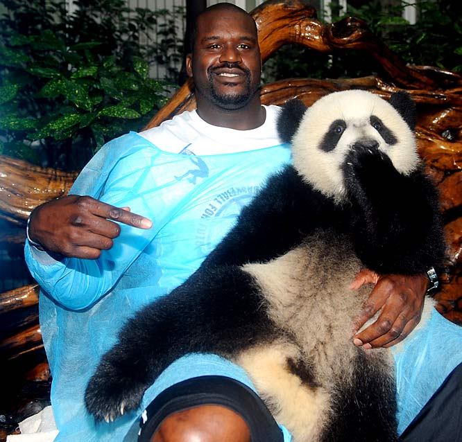 The Big Diesel will star next month in <i>Shaq Vs.</i>, an ABC reality series that pits him against top athletes in their respective sports. This probably explains why the new Cavalier has recently been challenging Michael Phelps and Lance Armstrong to races on Twitter. While seeing him in the pool or on a bike would be great, the competition everyone would love to see is Shaq -- who's a big UFC fan -- in the Octagon against Brock Lesnar. Well, everyone except for LeBron James, of course.