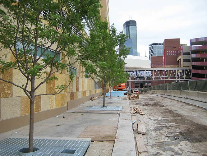 Landscaping is under way on the 7th St. side of Target Field.