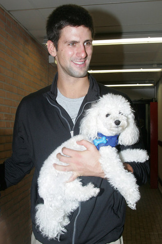 Novak Djokovic's poodle, Pierre, made headlines in 2011 when Wimbledon officials banned Pierre from the All England Club. Pierre, who like Andy Murray's dog Maggie May also has his own Twitter account, is a regular member of the No. 1 ranked tennis player's travel crew.