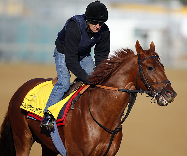 British trainer Jeremy Noseda's first trip to saddle a Derby starter was delayed more than a week by the Icelandic volcano. Awesome Act made the first five starts of his career in Europe before finishing fourth in last November's Breeders Cup Juvenile Turf race in California. This spring he won the Gotham and finished third behind Eskendereya in the Wood Memorial, a race in which Awesome Act stumbled out of the starting gate and subsequently threw a shoe, compromising his chances of winning.
