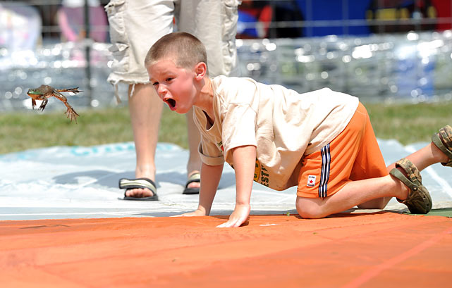 Few things in sports quicken the pulse quite like a spirited amphibian competition, and this year's Valley City (Ohio) Frog Jump Festival on Aug. 15 sure delivered. You'll croak when you see what went down... or up, as the case may be.