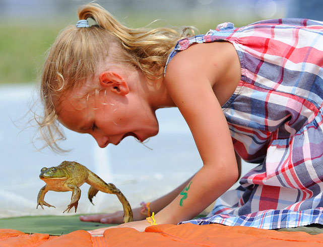 Five-year-old Kylie Bregitzer from Brunswick, Ohio, gives her frog a yell at the Valley City Frog Jump Festival on Aug. 15 in Valley City, Ohio.