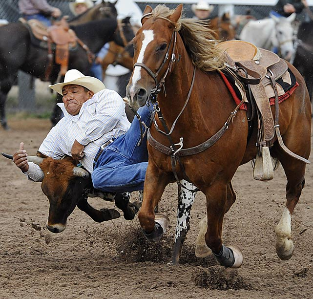Ben Bates Jr. slides off of his horse and gets his hands on the steer.
