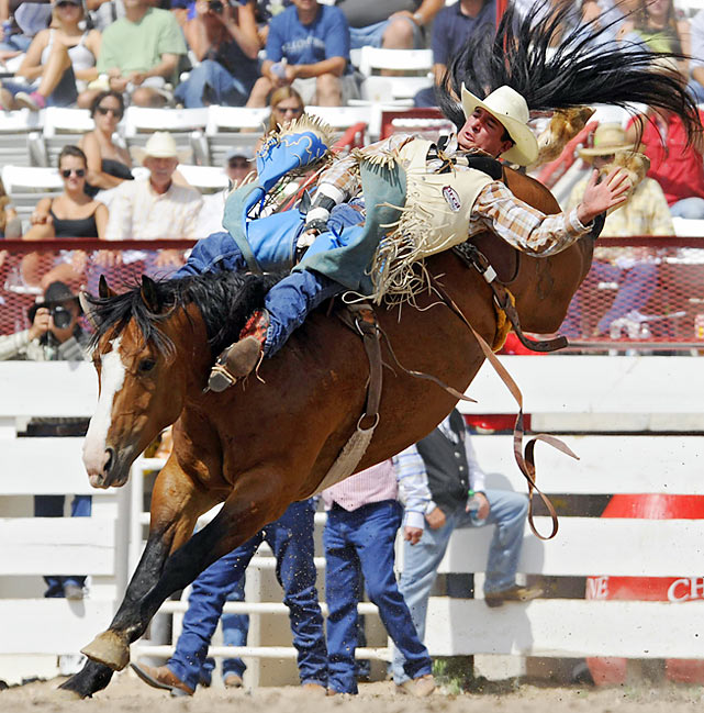 A bareback bronc rider like Zach Dishman of Beaumont, Texas, does not use a saddle or rein to help stay on the horse. Instead, riders like Dishman only use one hand to grip a single handle on the horse.