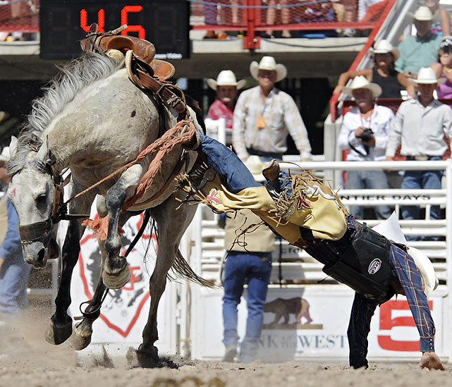 Saddle bronc rider Frank McKay of Fruitland, Idaho, is thrown off his horse.
