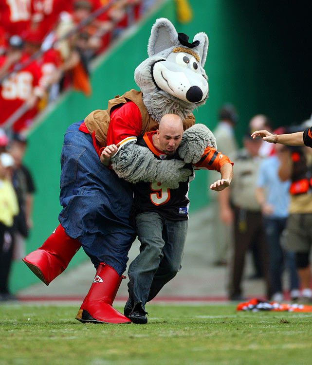 Bengals fans apparently didn't learn their lesson in January 2006.  When they came back to Arrowhead Stadium later that year, the always diligent K.C. Wolf quickly disposed of them.