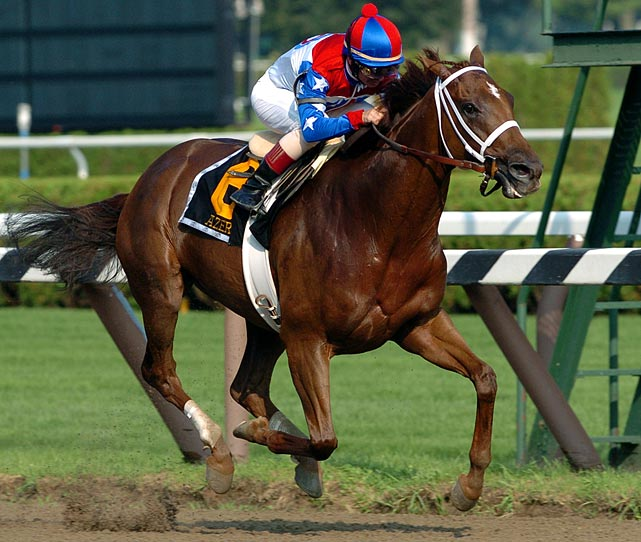 Trained by one of the few horsewomen of the day, Laura de Sourox, Azeri earned an impressive 17 victories in her 24 starts. The mare also has the distinction of being the leading female horse earner in the sport, amassing $4,079,820 in prizes at the time of her retirement in December 2004.