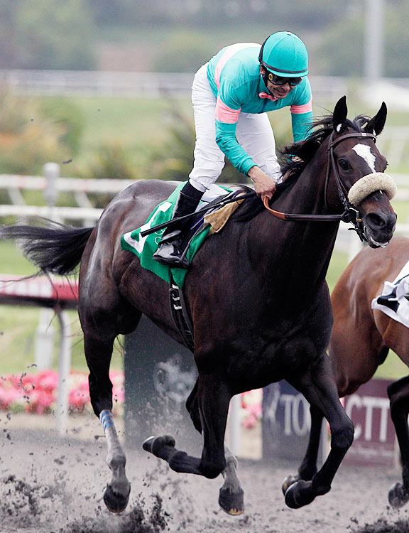 On June 13, Zenyatta captured her historic 17th consecutive victory, setting a new record for consecutive wins, and tying Rock of Gibraltar for most consecutive Group 1 victories.