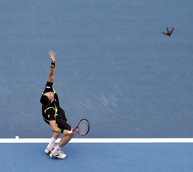 Soderling serves to Dolgopolov as a bird flies near.
