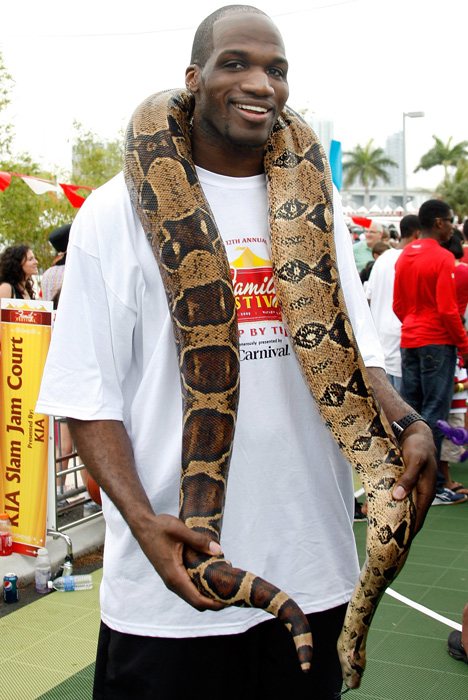 Heat center Joel Anthony poses with a python during the 2009 Miami Heat Family Festival.