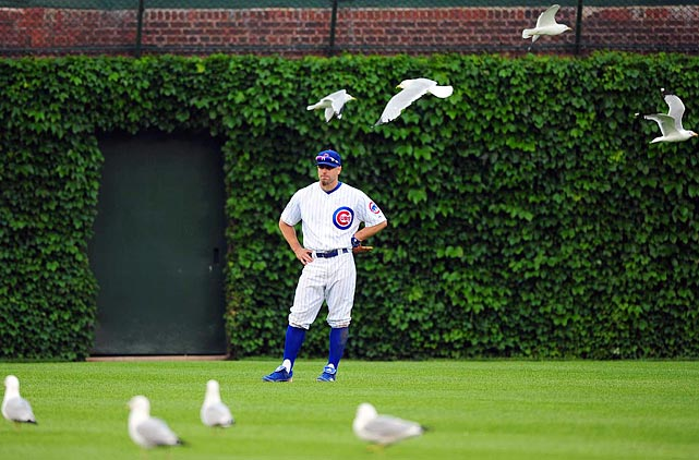 Playing outfield was for the birds ... and Reed Johnson on June 18.