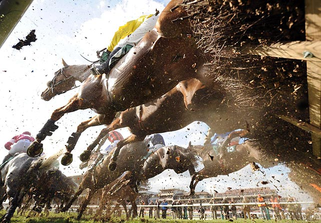 An under-belly look at horses racing in the Cheltenham Festival, one of the biggest meetings of the National Hunt racing calendar in the United Kingdom.
