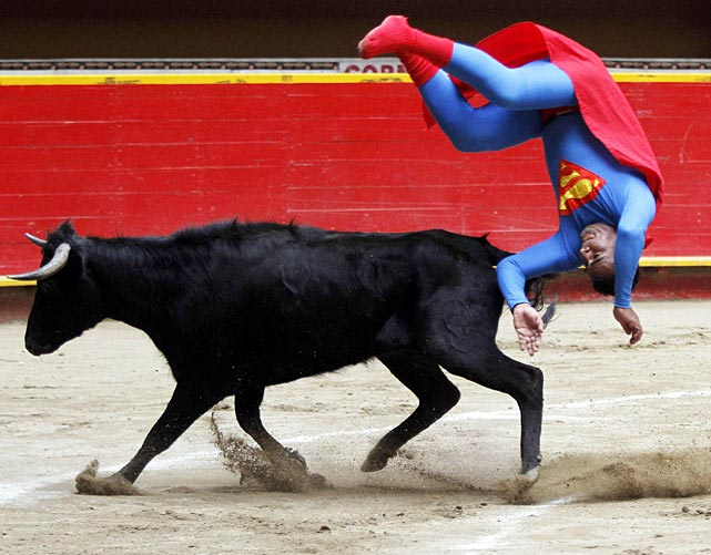 Pedro Sanchez, a dwarf bull fighter dressed in a Superman costume, flips near a calf in Medillin, Colombia.