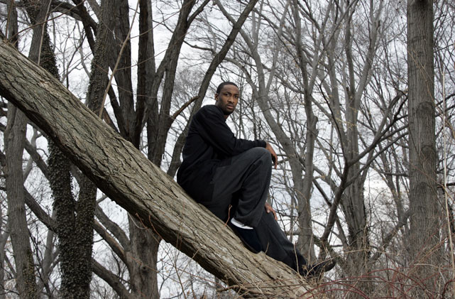 Arenas, contemplating on a tree.
