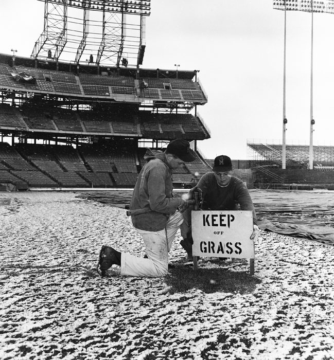 Members of the groundscrew at Metropolitan Stadium put up a keep off the grass sign in preparation for the Twins opener later that day.