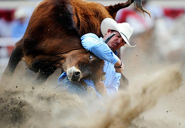 To celebrate the 100th anniversary of the Calgary Stampede Rodeo on July 6, Oregon native Trevor Knowles grapples a steer to the ground in a steer wrestling event.