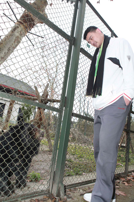 Yao looks at a bear at Animal Asia's moon bear sanctuary in Chengdu, China.