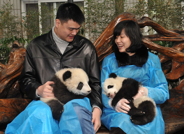 Yao and his wife Ye Li hold pandas during a ceremony for the release of six pandas  in southwestern China's Sichuan province.