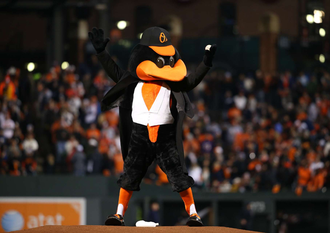 Try to get seats high up because you can see everything! Or sit near the bullpen or dugout, where it is easy to get an autograph. Always get Carvel Ice Cream! And try to meet The Bird because he can lead the Orioles to a magical win!