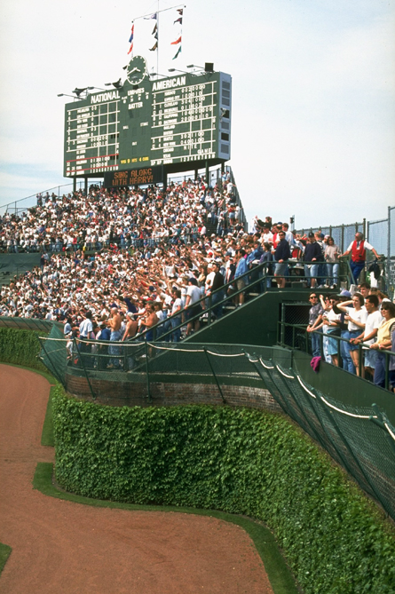 The ivy on the outfield wall is one of the most recognizable scenes in sports and my favorite part of Wrigley Field. The green, manually operated scoreboard is a reminder of sports before video screens.