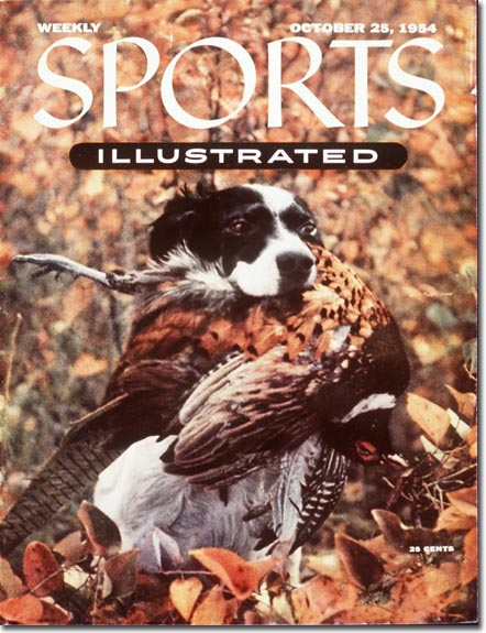 The very first animal to appear solo on the cover was this hunting dog and the fowl he fetched.