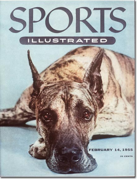 It may have been the Valentine's Day issue, but this was one sad and lonely pup.