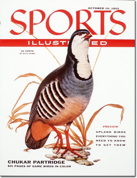 The editors used the chukar partridge to tease six pages of full color birds. EXCITING.