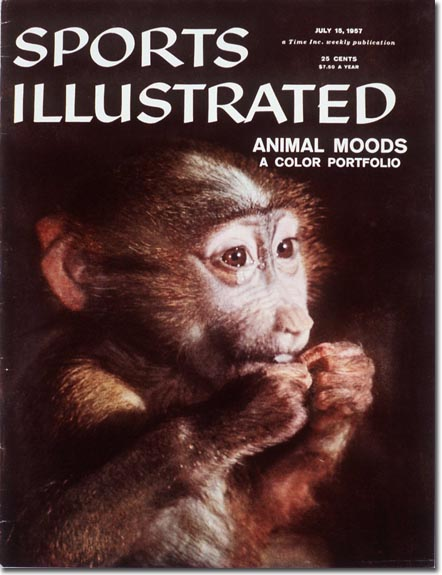 An exploration of animal moods