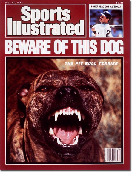 SI says beware of this pitbull. We agree.