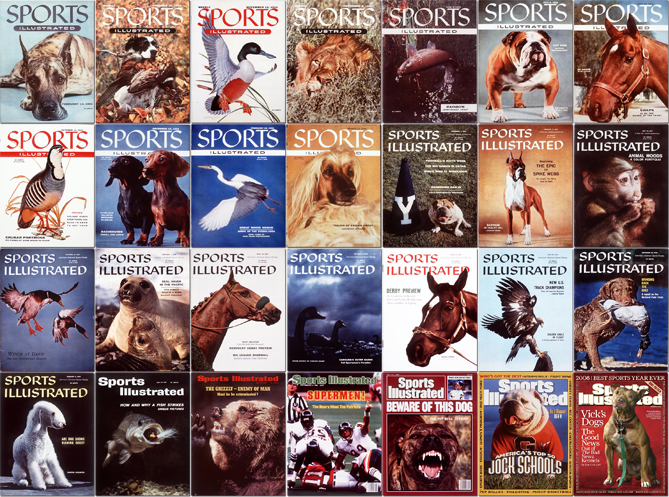 Back in the early days of our older brother publication, Sports Illustrated, the magazine regularly featured not just athletes on the covers, but animals. See, SI wasn't just a magazine about sports, it was for sportsmen, which meant birds, fish, dogs and other wildlife made their way onto the cover. And cute wildlife at that! Really, 1950s Sports Illustrated was Buzzfeed before Buzzfeed was Buzzfeed. So we dug into the archives and found the covers where there were no humans, just animals. We think you'll enjoy.