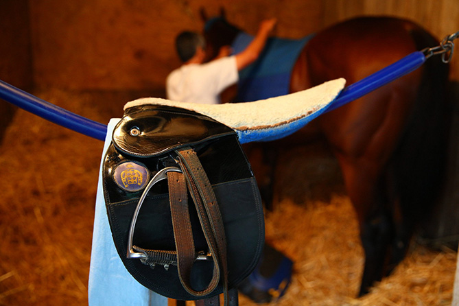 American Pharoah will be the only horse in the Belmont to have run in all three Triple Crown races. Among his rested opponents will be Frosted, who finished fourth in the Derby, and Materiality, who finished sixth.                   <p>                   It is a familiar story line and a daunting assignment. Of course, if it was easy, it would have happened again by now.