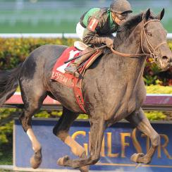 With jockey Joe Bravo in the irons, Just Call Kenny won the Spectacular Bid Stakes at Gulfstream Park on Jan. 4.