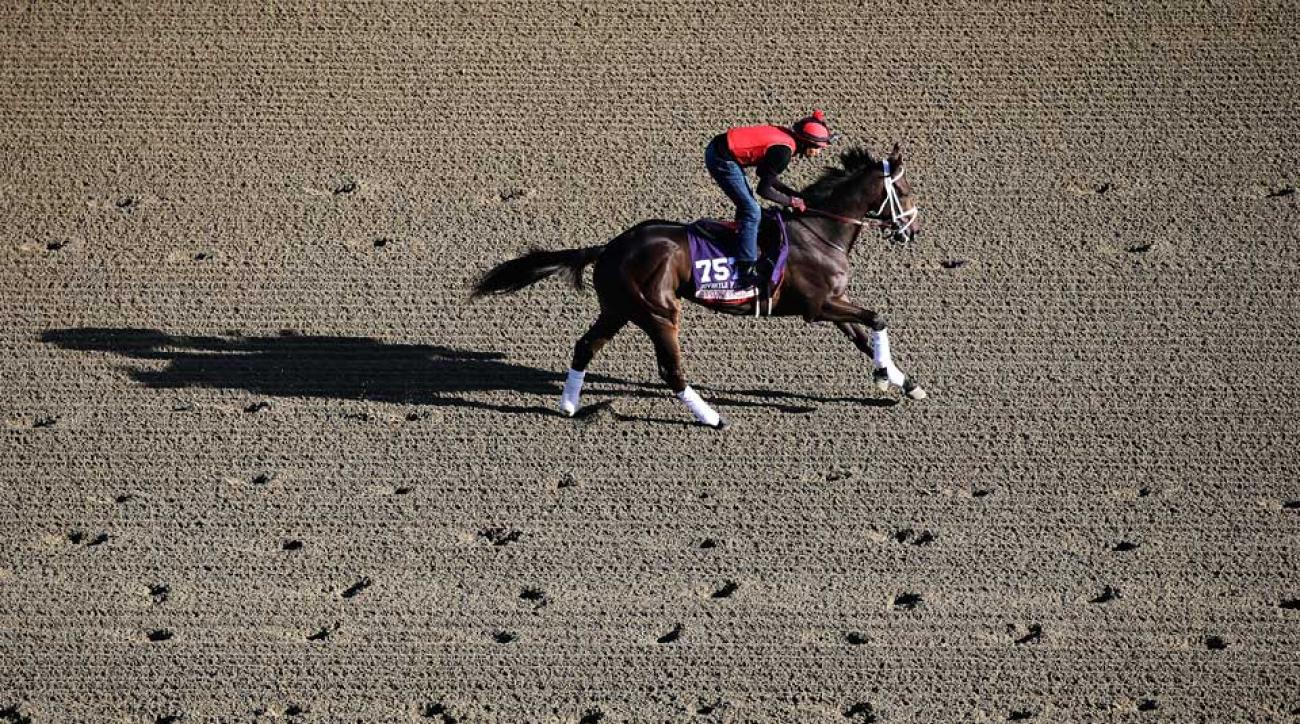 My Conquestadory finished fourth in last year's Breeders' Cup Juvenile Fillies Turf at Santa Anita Park for owner Ernie Semersky.