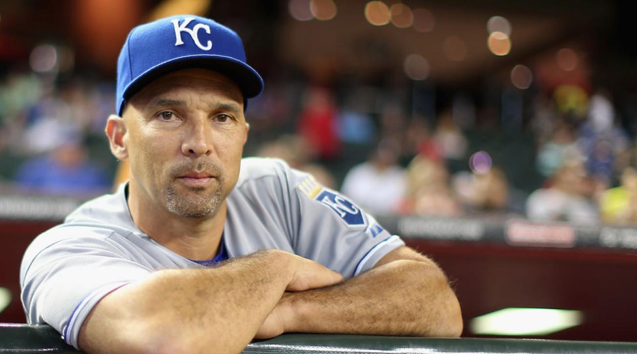 Raul Ibanez is among eight preliminary candidates for Rays manager